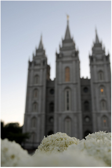 SLC temple and hydrangea (not my pic, but one I love--I want to give credit to the artist, but I've lost it.  Help!