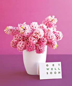 pink-flowers_300