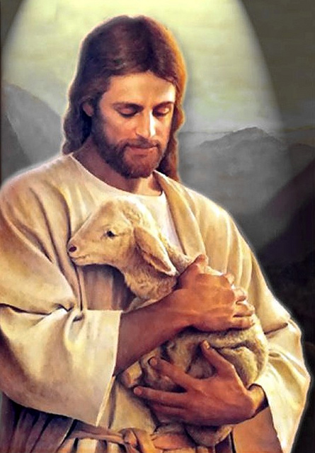The Good Shepherd by Waiting for the World